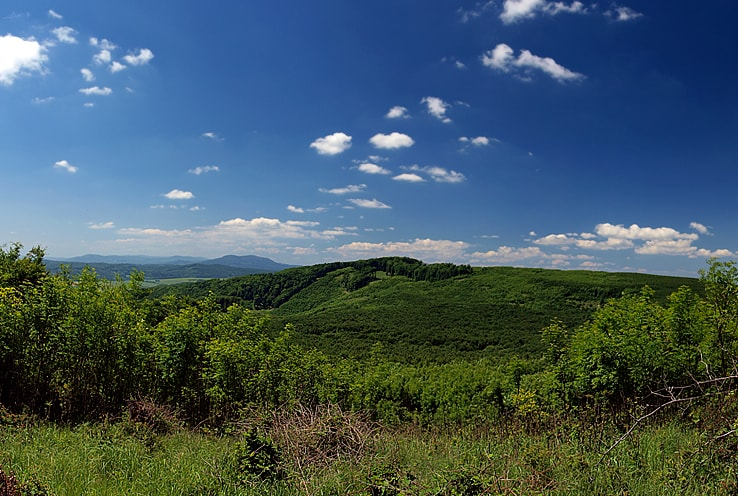 vrch klenova